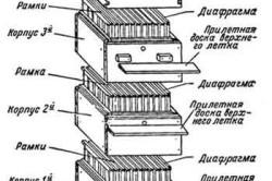 Схема многокорпусного улья