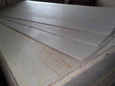 Различные породы дерева для фанеры